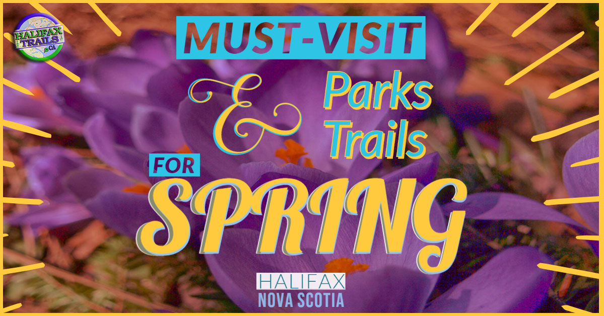 10 Must-Do Parks & Hiking Trails For Spring in Halifax, Nova Scotia