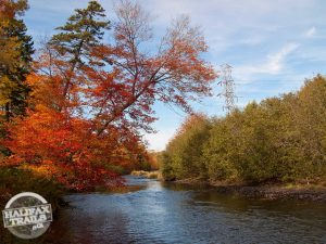 bedford sackville greenway autumn trail map halifax