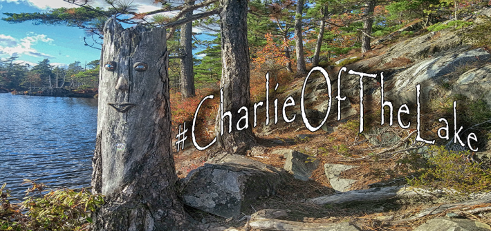 halifax tree people - charlie