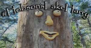 hobsons lake harry