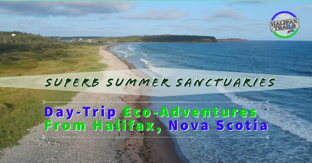 Summer hiking, biking, paddling and biking destinations in Halifax, Nova Scotia