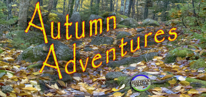 Fall Hiking & Biking Trails In Halifax