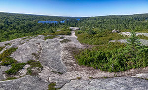 The Bluff Wilderness Hiking Trail Halifax Nova Scotia trails camping parking ns