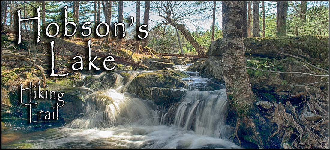 Hobson Lake Hiking Trail in Halifax's Blue Mountain-Birch Cove Lakes Wilderness