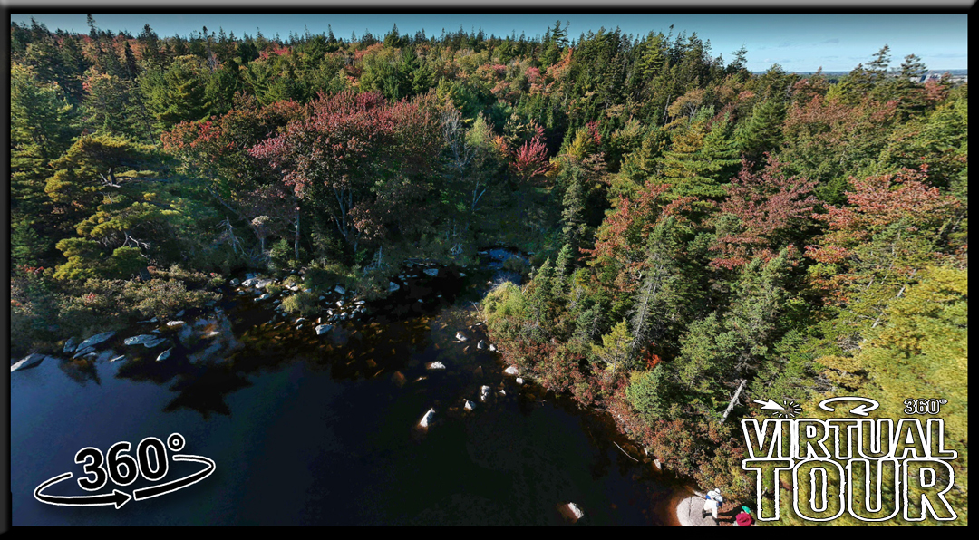 Hobsons Lake Hiking Trail Virtual Tour