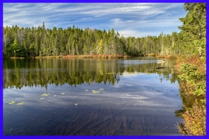 nine mile river trails comeau lake